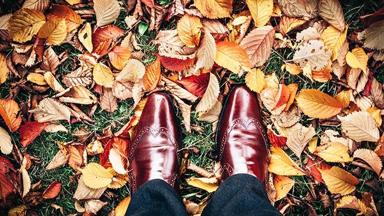 Autumn-Pack-ATM2-Lightroom-Preset-orig